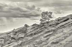 Two-Tree-Hill-at-Red-Rocks-BW-Sepia-24x36.JPG