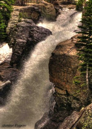 Alberta Falls in Rocky Mountain National Park Colorado