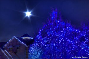 Denver Zoo Lights and Full Moon at Christmas