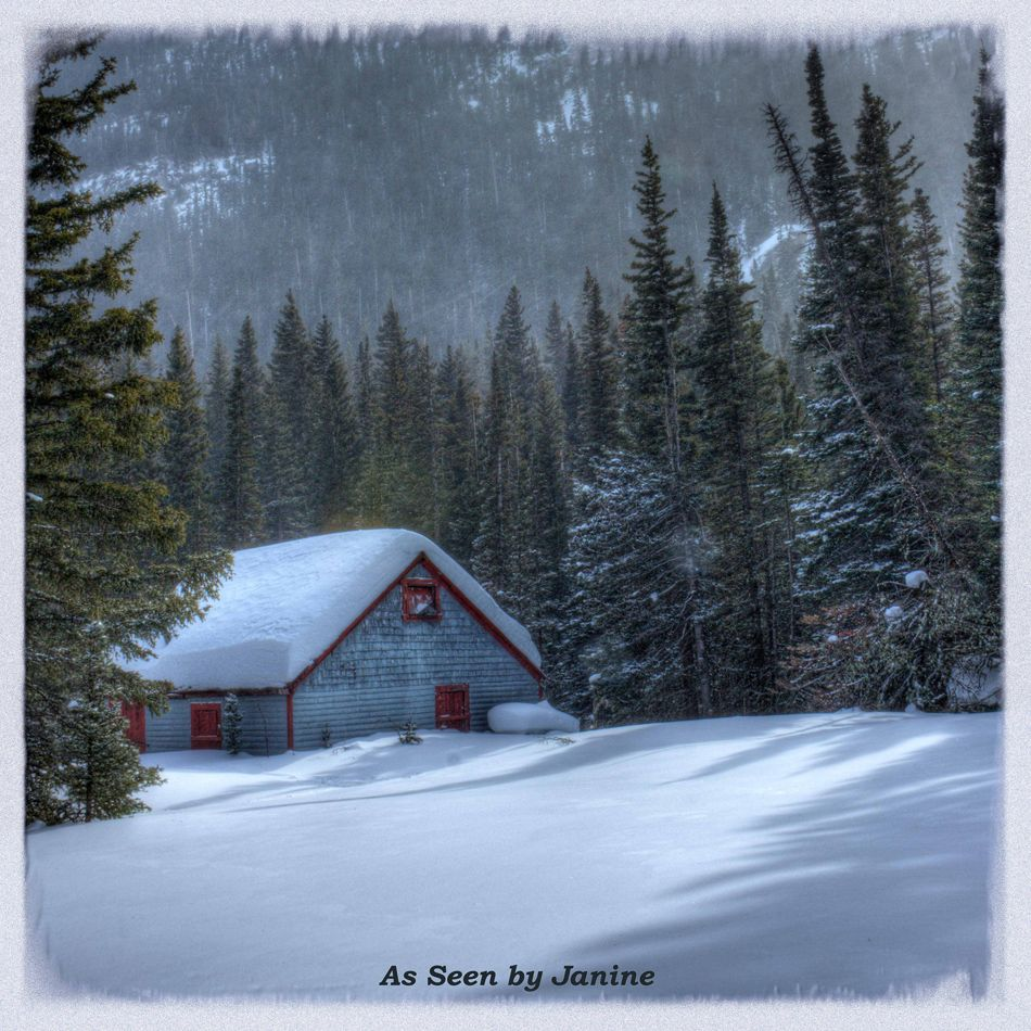 A look at the world asbj for Colorado cabin winter